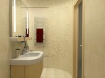 Kyiv apartment interior design project