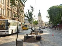 Project of greenery at Gorodotska street in Lviv