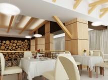 Project of cafe interior in Truskavets