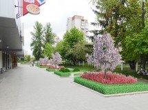 Проект обустройства общественного пространства на ул. Кульпарковской в г. Львове